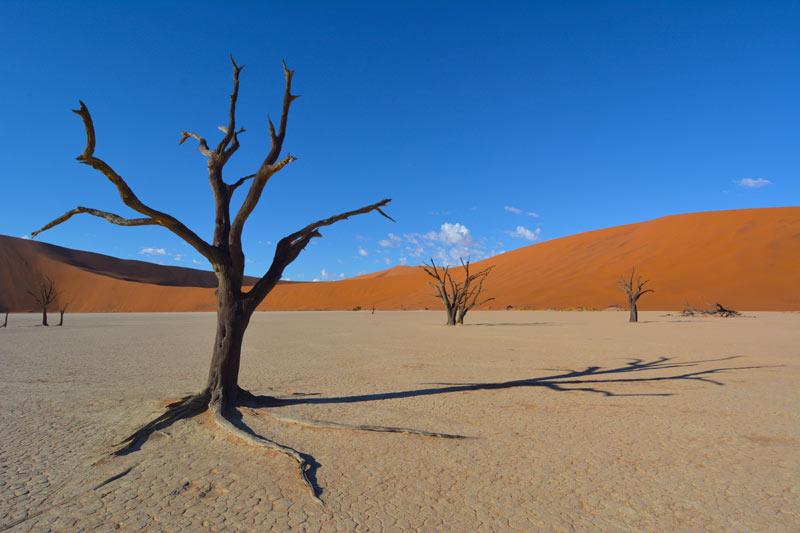 Sossusvlei, con sus dunas rojas y su cielo azul